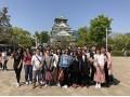 探索文化日本游 (1)
